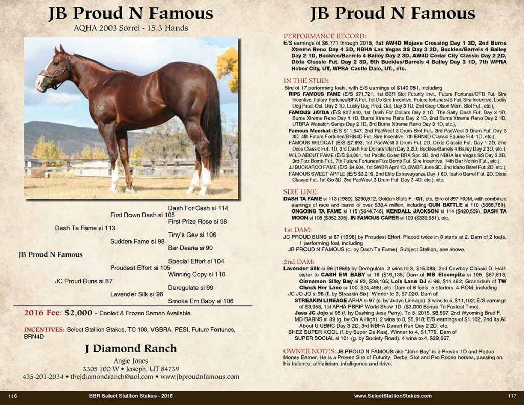 BBR Select Stallion Stakes AD